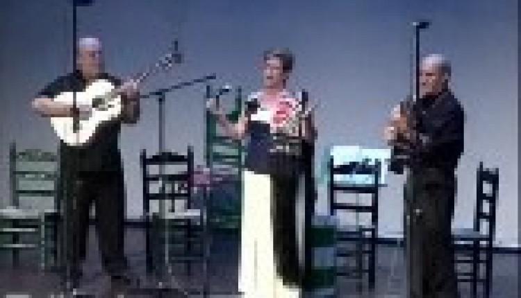 TORREVIEJA – LA ASOCIACION VIRGEN DEL ROCIO RECAUDO FONDOS DESTINADOS A LA ERMITA ROCIERA
