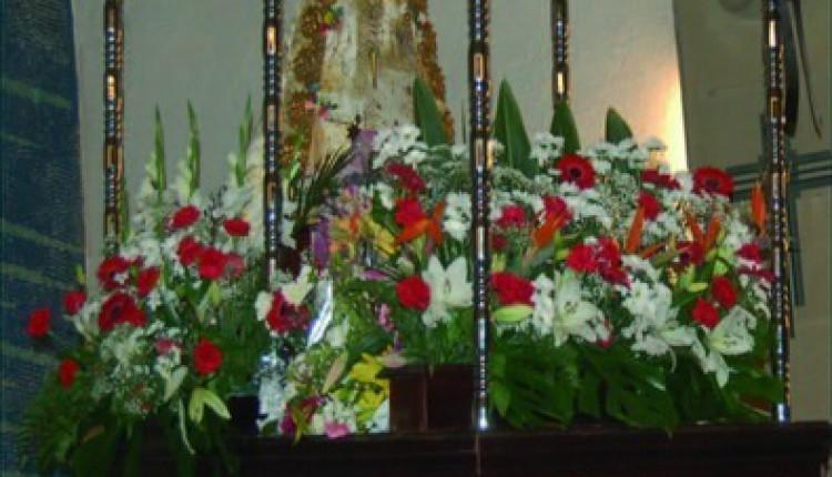 Asociación Cultural y Foklórica Andaluza de Tarragona – Romeria en Honor a la Virgen del Rocio