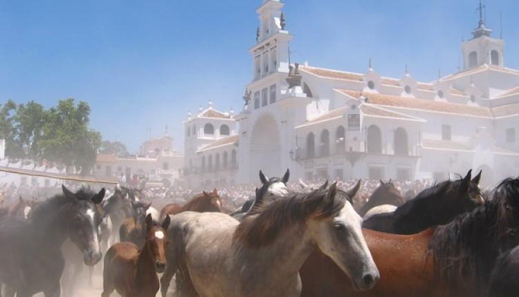 La asociación de fotógrafos de Almonte presenta bajo el título Costumbres, una muestra de la Saca de las Yeguas