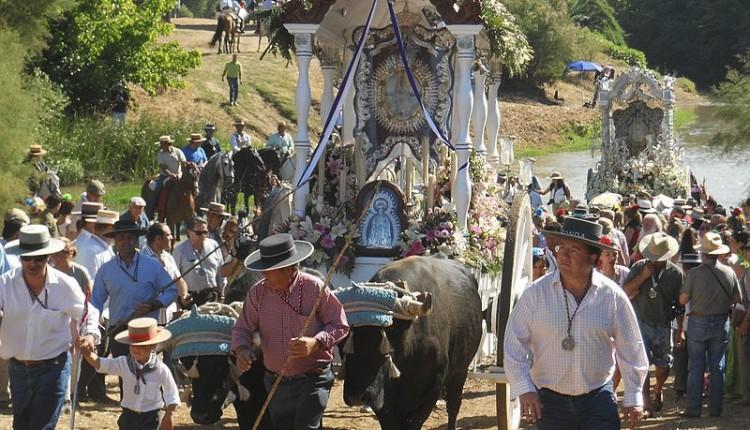 Peregrinaciones extraordinarias del jueves 8 de diciembre de 2011