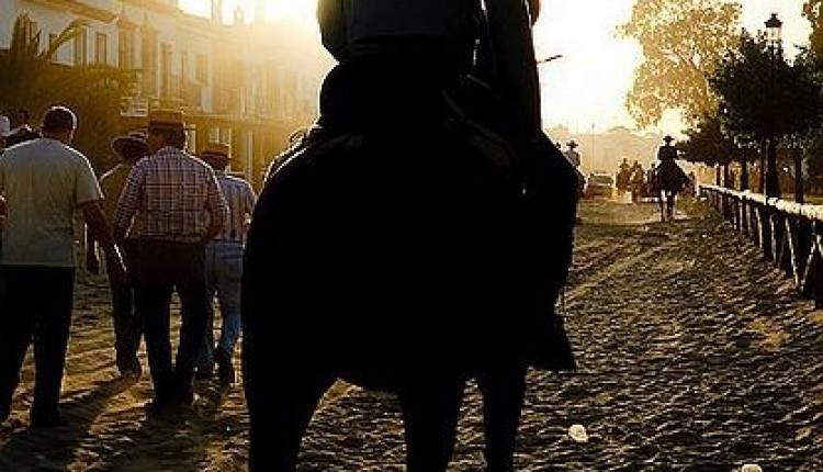Peregrinaciones extraordinarias del domingo 15 de enero de 2012