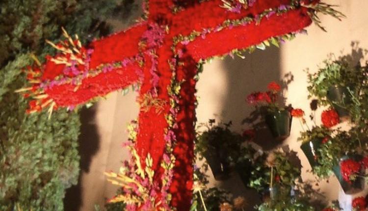 Hermandad de Sevilla Sur – Tradicional Cruz de Mayo