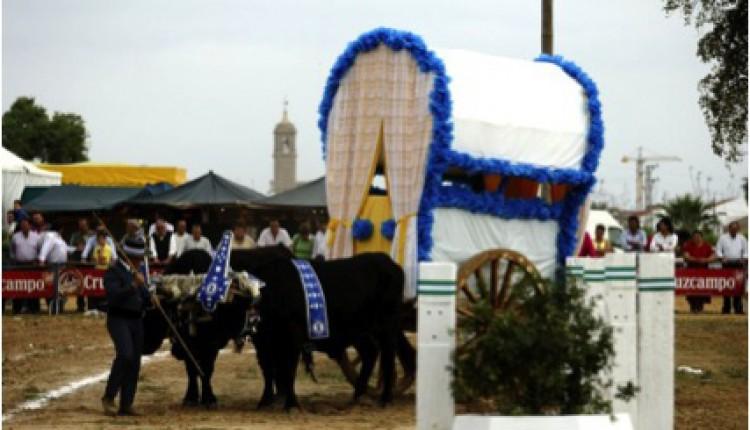 Hermandad de Villamanrique – CARAVANA SOLIDARIA DE LA PRIMERA Y MÁS ANTIGUA HERMANDAD DEL ROCÍO
