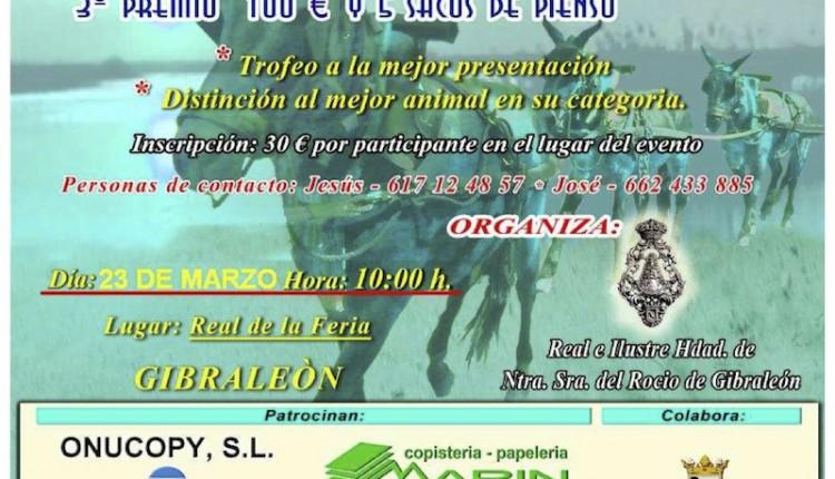 La Hermandad del Rocío de Gibraleón aplaza su II Concurso de reata, 3 a la larga.