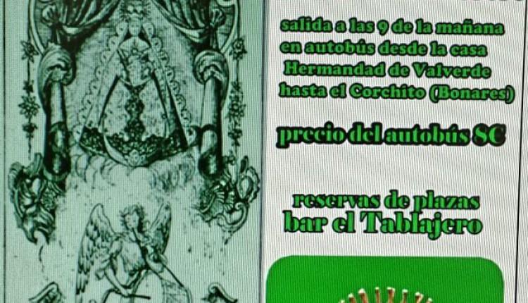 Hermandad de Valverde del Camino – Peregrinación andando desde el corchito hasta el Rocío.