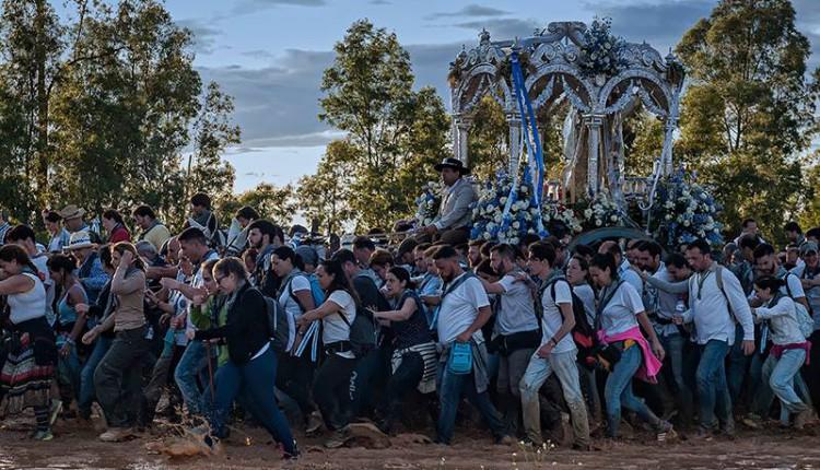 Salida de Hermandades al Rocío el jueves 1 de junio de 2017