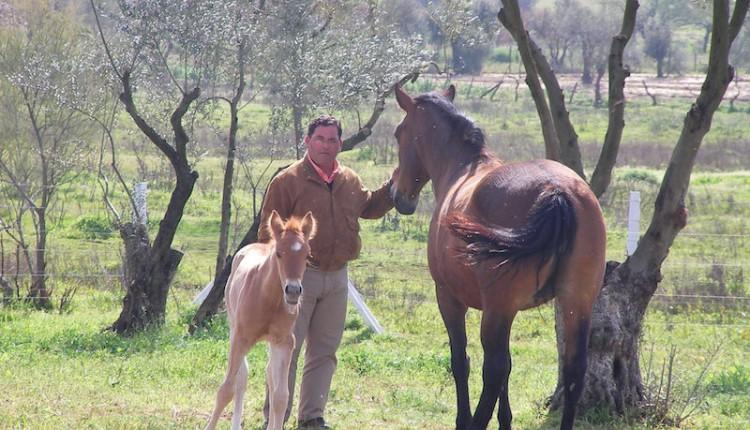 Hermandad de Alicante – D. Antonio Rodríguez Basurto pregonero de la Romería 2015