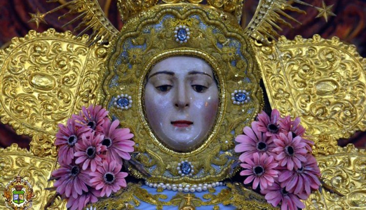 Peregrinaciones extraordinarias del domingo 20 de enero de 2013