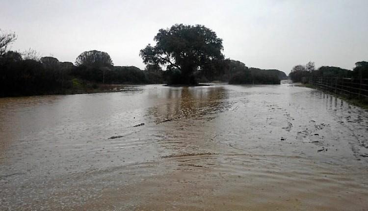 El Espacio Natural Doñana y el Ayuntamiento de Hinojos suspenden el paso por la Raya Real