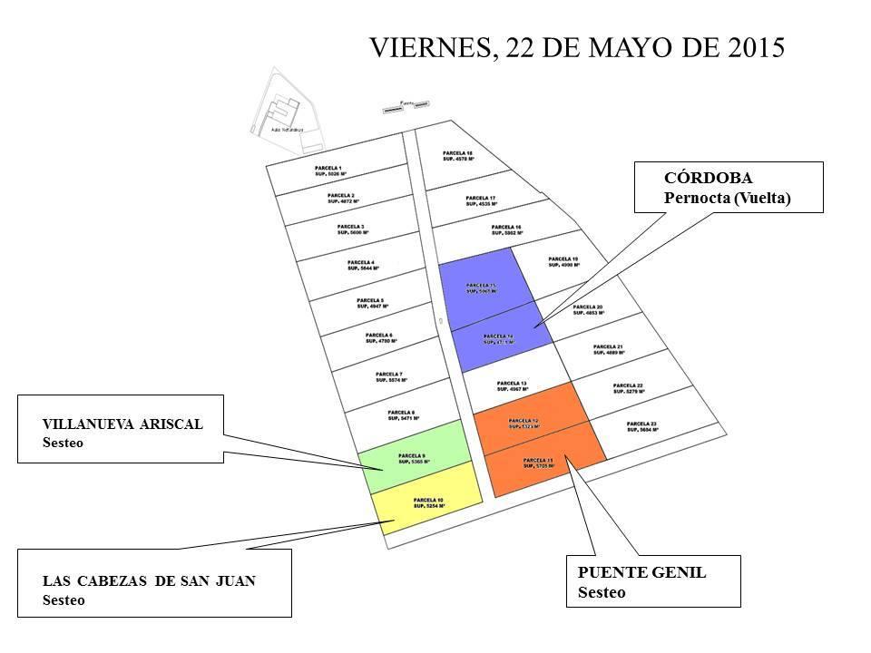 Dehesa boyal Villamanrrique 2015-4