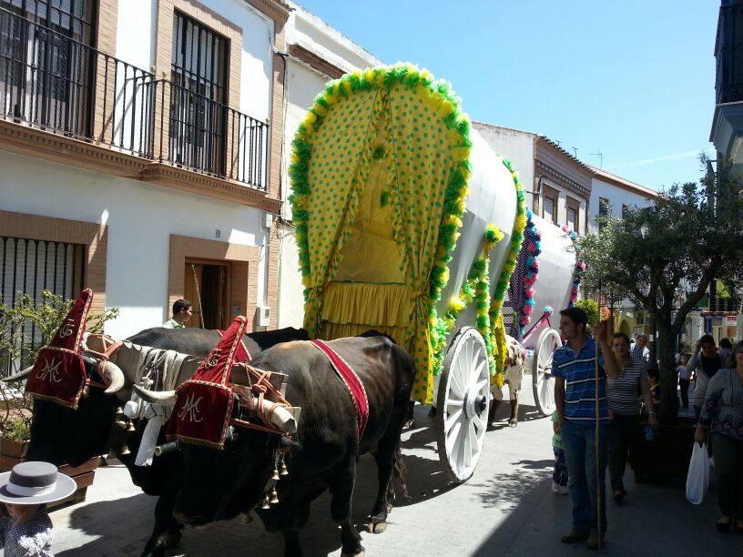 Gines carreta solidaria 2015