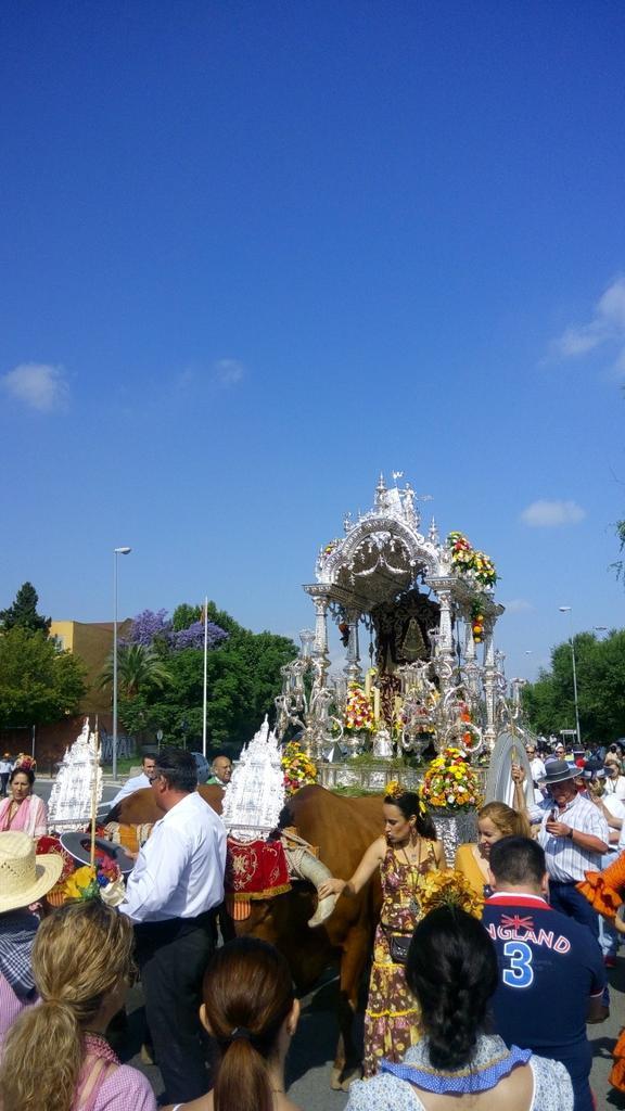 Salida Sevilla Sur 2015 -4