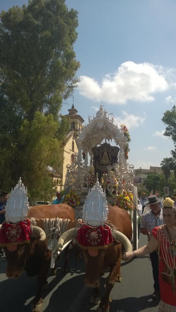 Salida Sevilla Sur 2015 -5