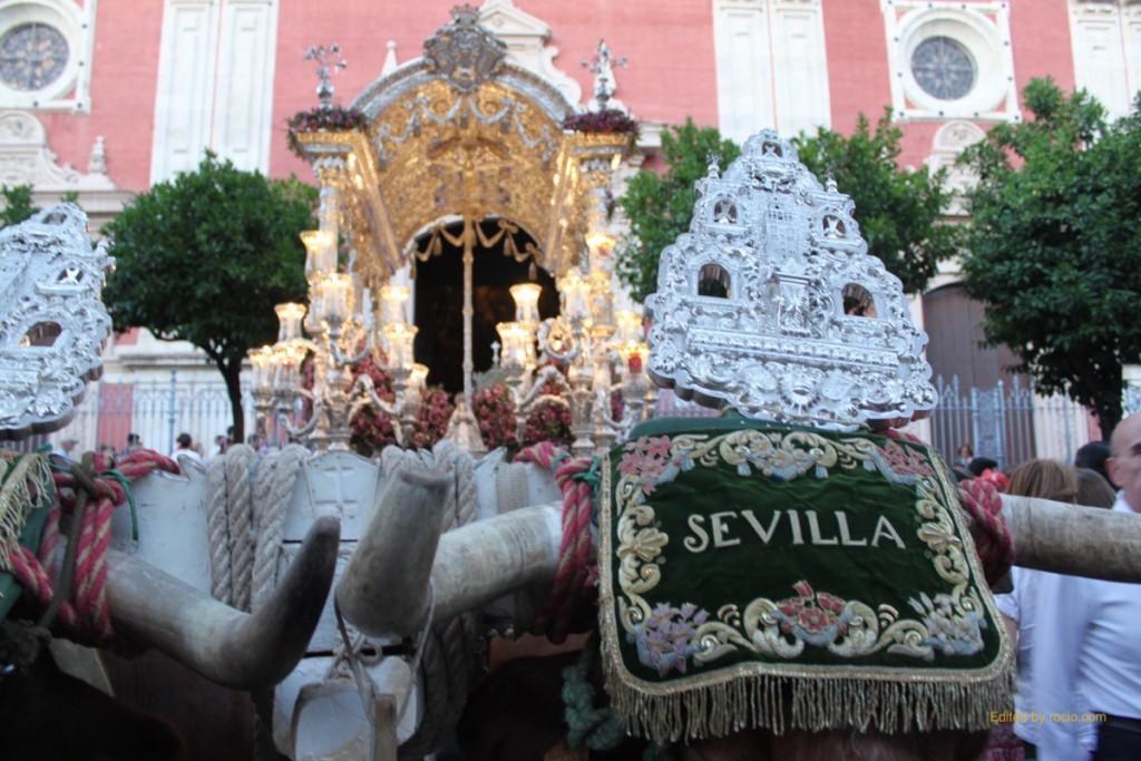 Sevllla Salvador rocio entrada 2015-3066