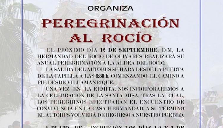 Hermandad de Olivares –  Peregrinación al Rocío 2015