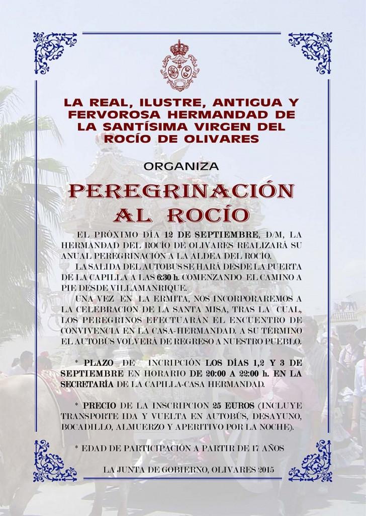 Peregrinacion-Adultos-2015-olivares