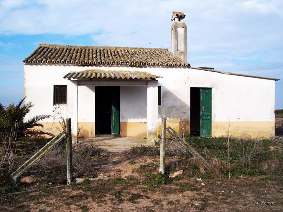 Casas de Doñana: El Raposo