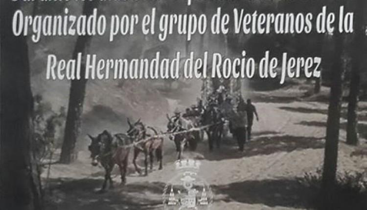 Hermandad de Jerez – II Campeonato de Dominó