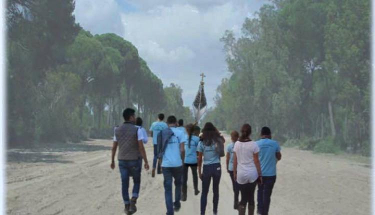 Hermandad de Marbella – Peregrinación juvenil al Rocío