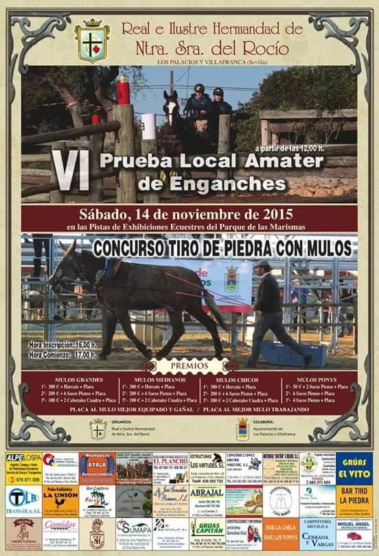 Los Palacios enganches 2015
