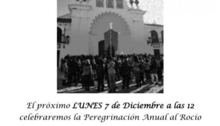 Hermandad de Paterna del Campo – Peregrinación anual al Rocío