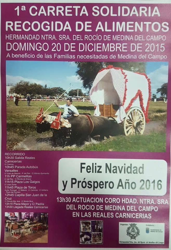 Medina del Campo navidad 2015