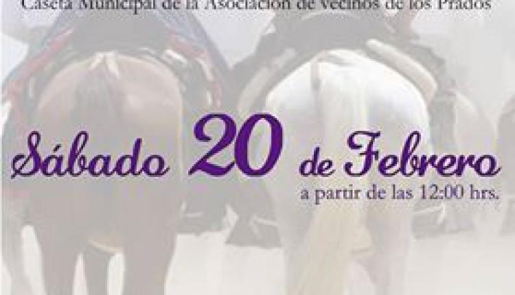 Hermandad de Málaga – Exhibición de Coches de Caballos, Amazonas y Carreras de Cintas