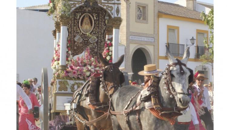 Hermandad de Toledo – Solemne Triduo y Pregón a cargo de Juan Antonio Valle Lima