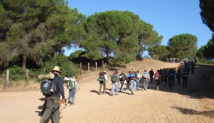 XXXVII Peregrinación andando desde Dos Hermanas hasta la Ermita de Nuestra Señora del Rocío