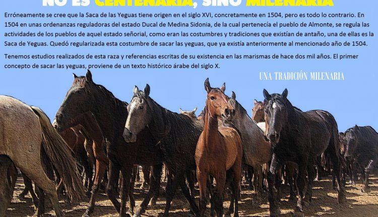 LA SACA DE LAS YEGUAS NO ES CENTENARIA, SINO MILENARIA por Javi el almonteño