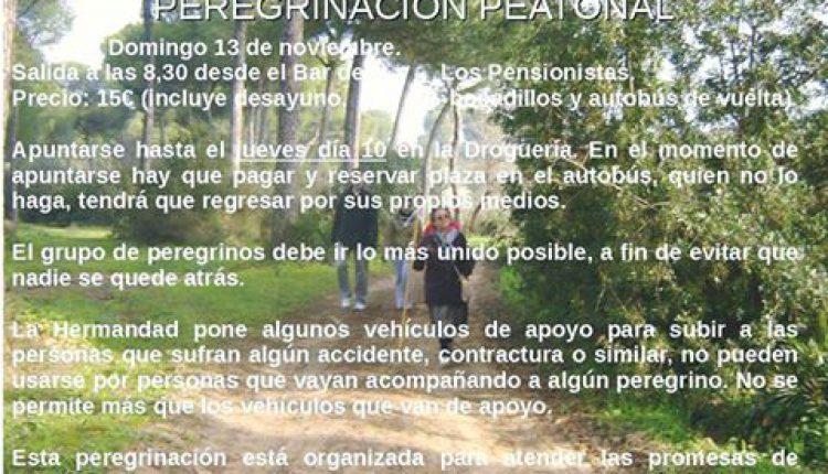 Hermandad de Hinojos – Peregrinación Peatonal al Rocío