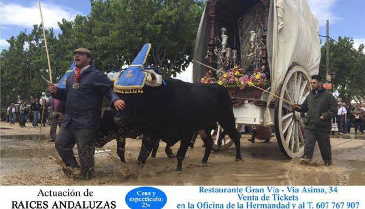 Hermandad de Palma de Mallorca – Fiesta Rociera el Hermano Mayor