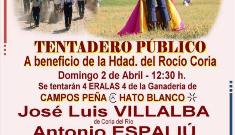 Hermandad de Coria del Río – Tentadero Público