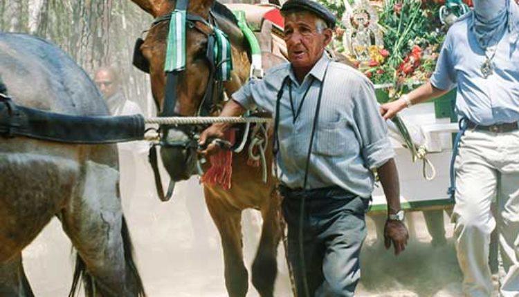 Peregrinaciones Extraordinarias Hermandades del Rocío del domingo 7 de octubre de 2018