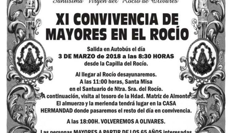 Hermandad de Olivares – XI Convivencia de Mayores en El Rocío