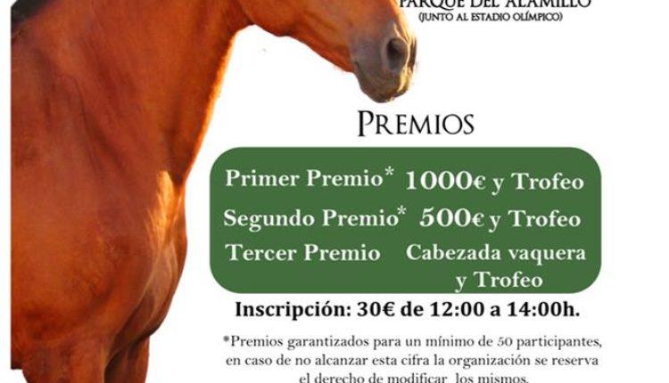 Hermandad de Sevilla Macarena – I Carrera de Cintas a Caballo