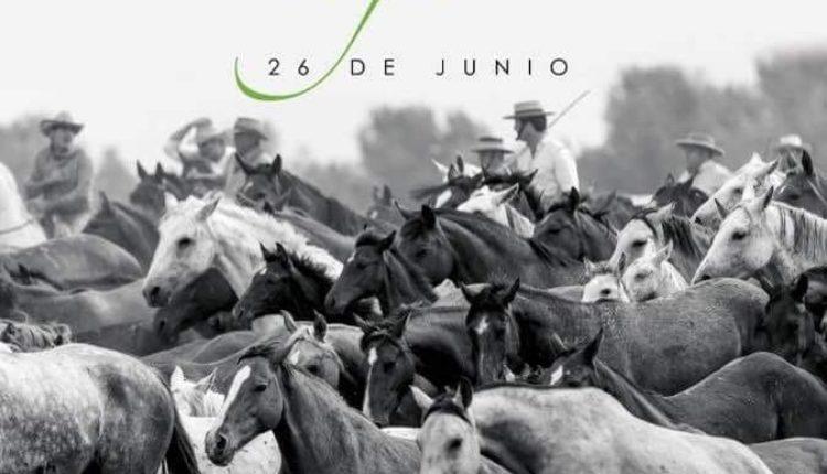 Saca de Yeguas en Almonte 2018