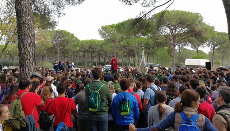 Camino de los Jóvenes de Almonte y otras Filiales al Rocío. Más de 900 Jóvenes Peregrinan
