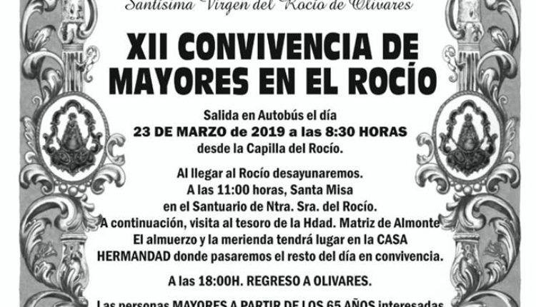 Hermandad de Olivares – XII Convivencia de Mayores