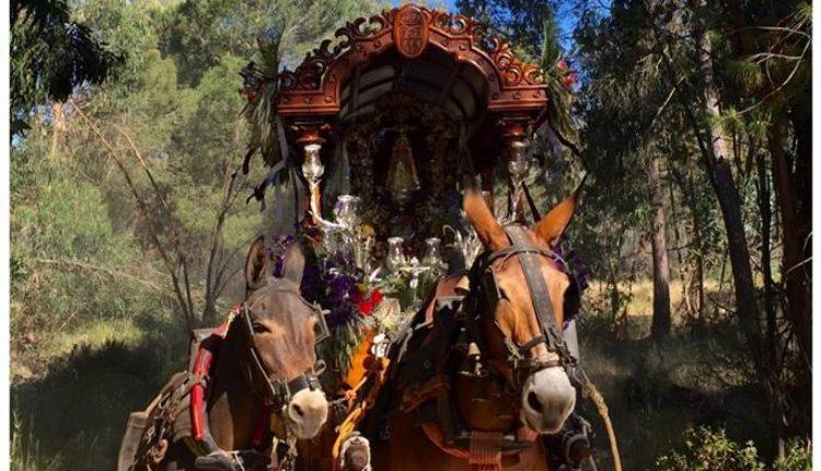 Hermandad de San Sebastián de los Reyes – Cartel de la Romería del Rocío 2019