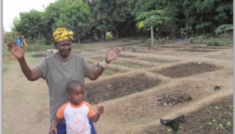 Ofrenda del Foro del Rocío 2019 – 1ª Propuesta, Pozo en Mali para una Coop. Agrícola de Mujeres